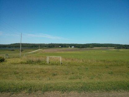 Alfred farm