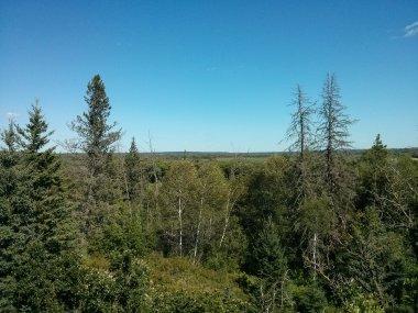 Asiniboine Valley