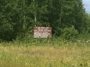 Black River Forest Fire sign says it was caused by human carelessness